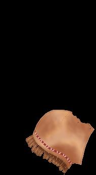 Soleil Ferret