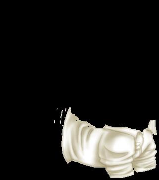 Pistache Ferret