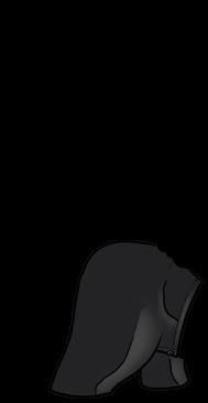 Adopt a Gray Beige Ferret