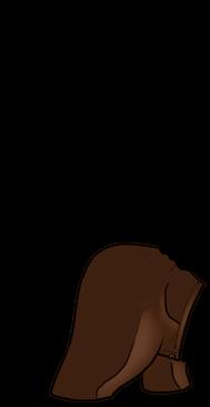 Adopt a Sun Ferret