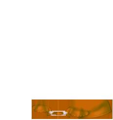 Abricot angora Mouse
