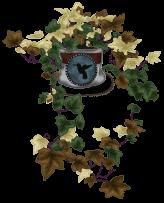 Garden Ivy