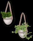 Garden Suspension 3