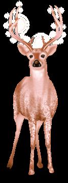 Snow Reindeer