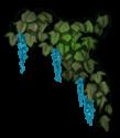 Elf Flower