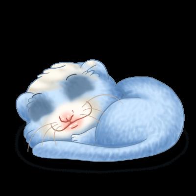 Adopt a Pastel Blue Ferret