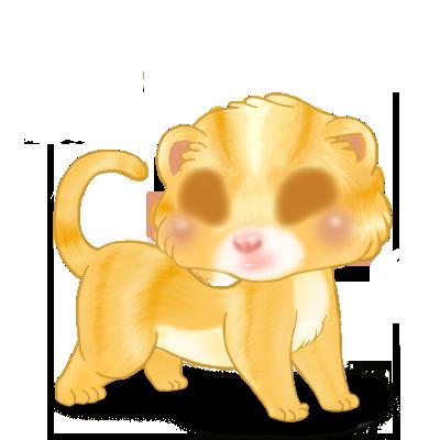 Adopt a Blond Ferret