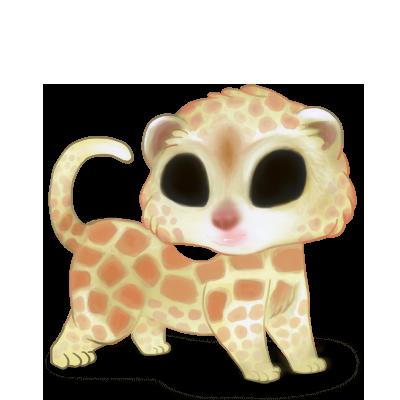 Adopt a Giraffe Ferret