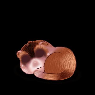 Chocolat Ferret