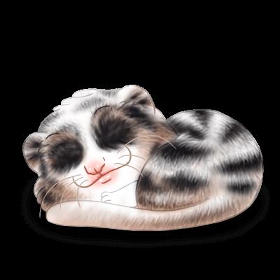 Adopt a Valentine Ferret