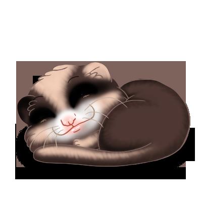 Adopt a Mandou Ferret