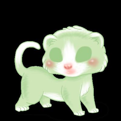 Pistachio Ferret
