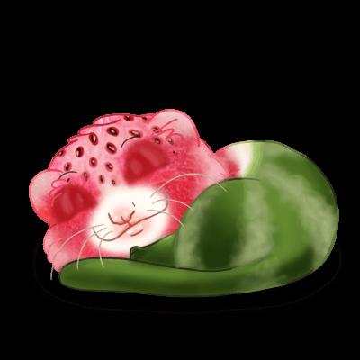Adopt a Watermelon Ferret