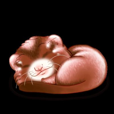 Adopt a Toffee Ferret