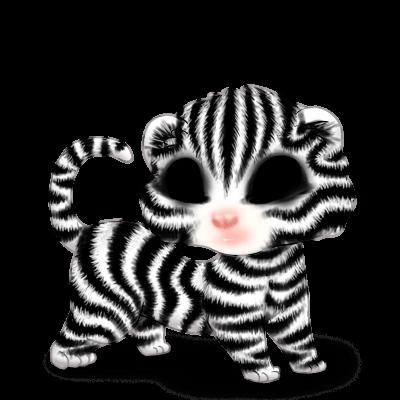 Adopt a Zebra Ferret