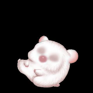 Adopt a Albino Hamster