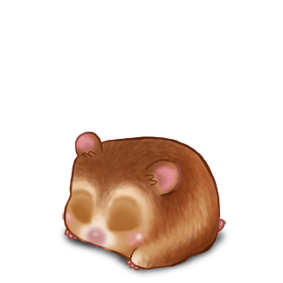Adopt a Golden beige Hamster