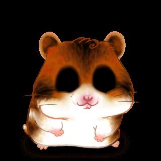 Adopt a Cappuccino Hamster