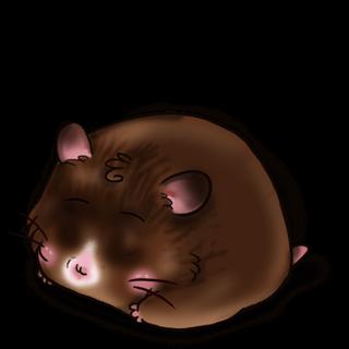 Adopt a Chocolate Hamster