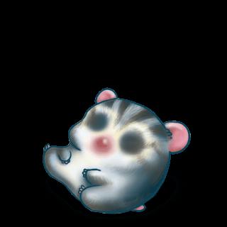 Adopt a Blue grey Hamster