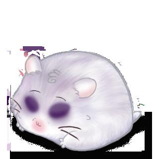Adopt a Violin Gray Hamster