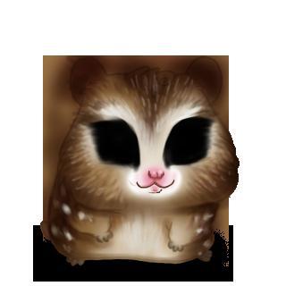 Hibou Hamster