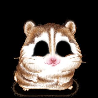 Adopt a Husky Brown Hamster