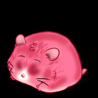 Adopt a CroMimiNine Hamster
