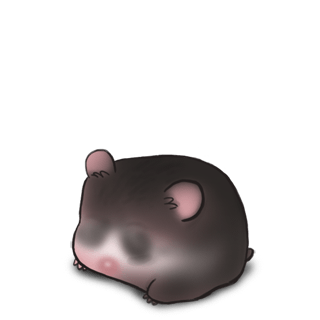 Adopt a Europe Hamster