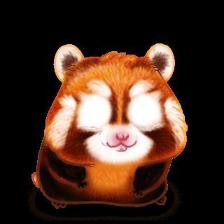 Panda Roux Hamster