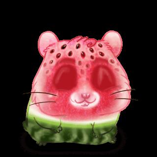 Adopt a Watermelon Hamster