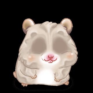 Sable Hamster