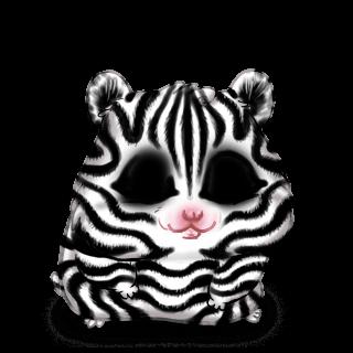 Adopt a Zebra Hamster