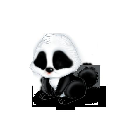 Adopt a Panda Rabbit