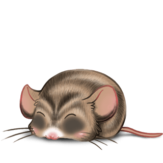Sunlight Mouse