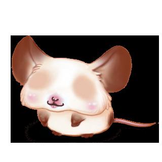Adopt a Bigout Mouse