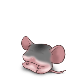 Domesticated Mouse