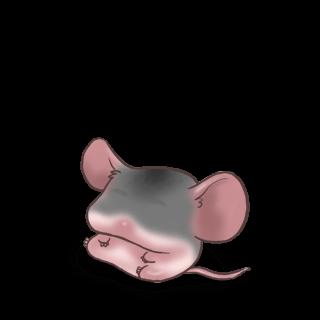 Domestique Mouse