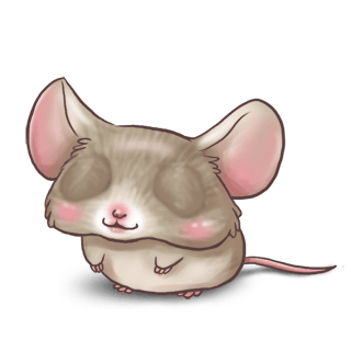 Adopt a Gray Mouse