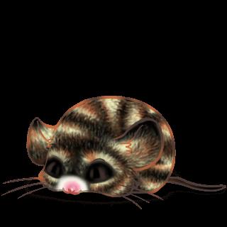 Bounette Mouse