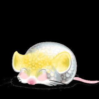 Adopt a Cockatoo Mouse
