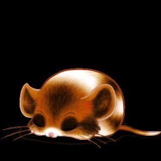 Adopt a Cappuccino Mouse
