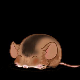 Caramel Mouse