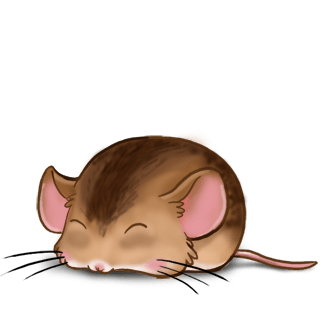 Chataigne Mouse