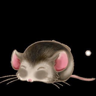 Adopt a Asian Mouse
