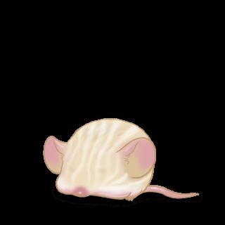 Adopt a Cream Mouse