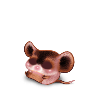 Adopt a Chocolate Mouse