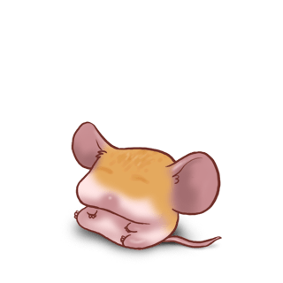 Adopt a Toffee Mouse