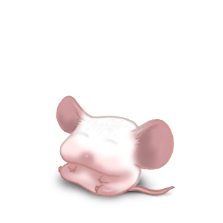 Adopt a Domesticated Mouse