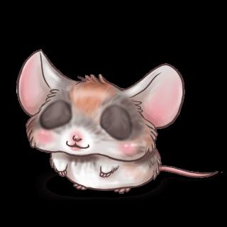 Angora Mouse